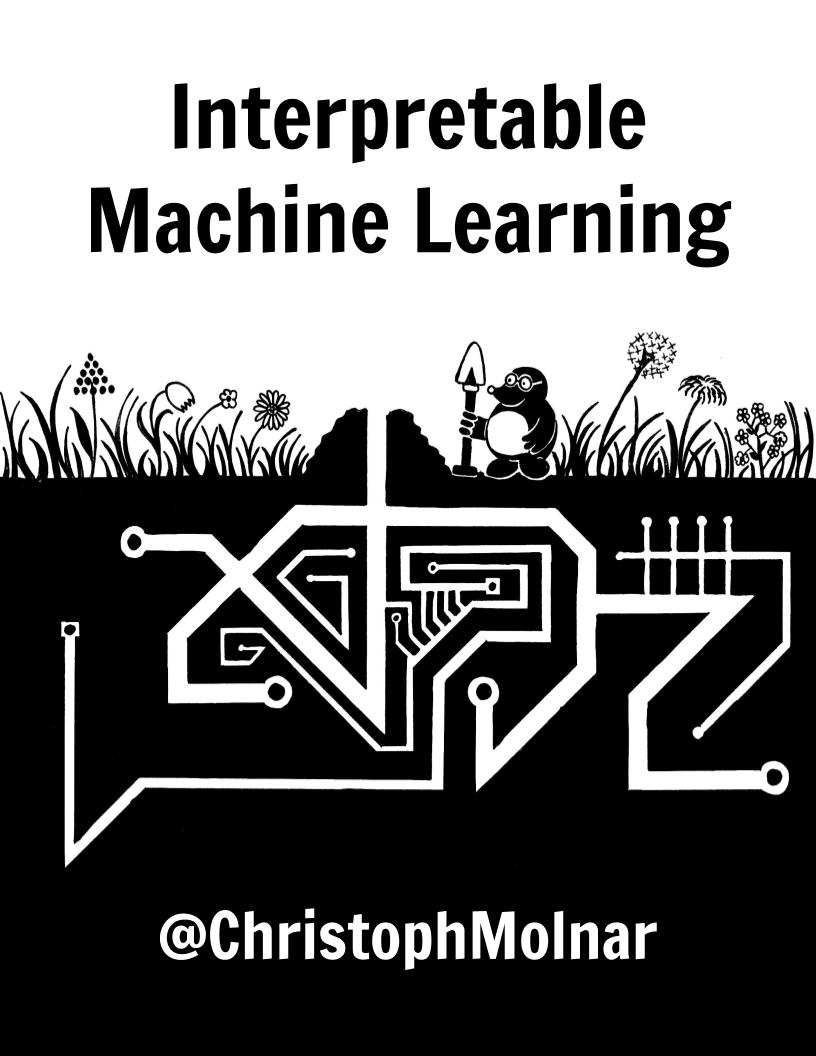 IML: Machine Learning Model Interpretability And Feature Explanation