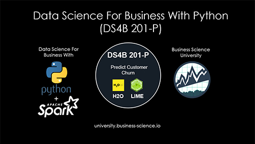 Data Science For Business Course Virtual Workshop - Python